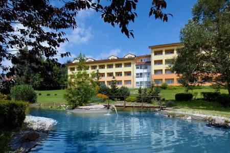 Exclusive HOTEL Lipno 4* Wellness & SPA 202