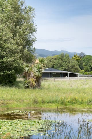 Private studio near the river - Waikanae - Mökki