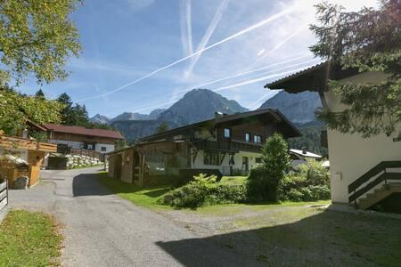 Charmantes Apartment in Ehrwald mit überdachter Terrasse