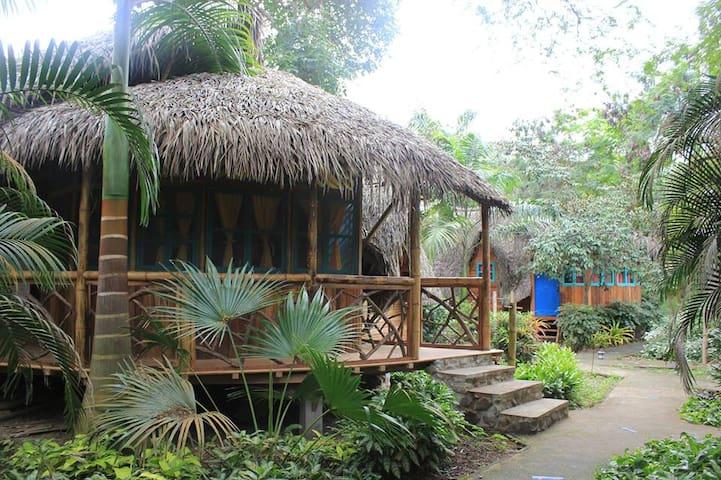 #1 Private Jungle Cabins On the BEACH! Cabin #1