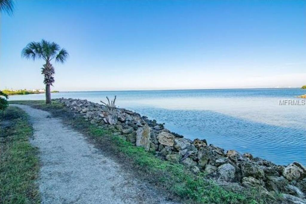 Beautiful walkways along Tampa Bay are part of condo nature trails