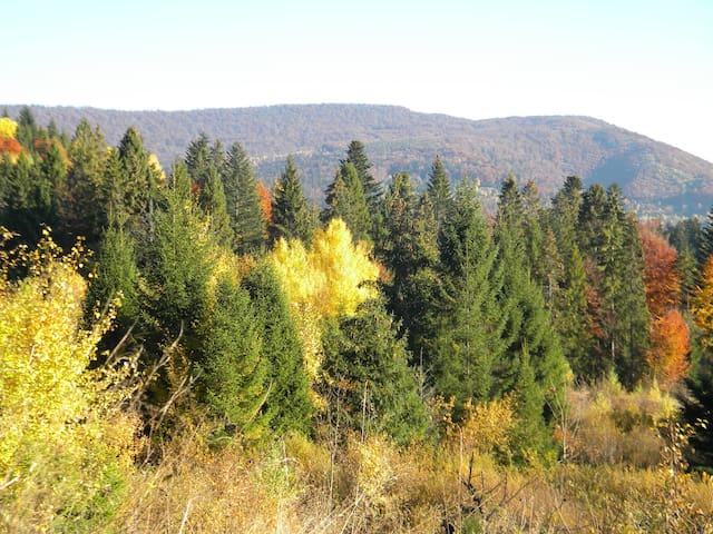 An autumn walk around Kukavica