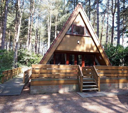 No 15 Weybourne Forest Lodges