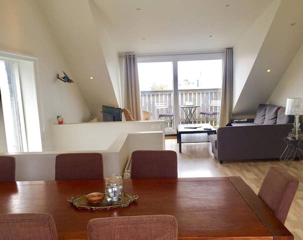 Big Penthouse in Center of Reykjavik-FREE PARKING