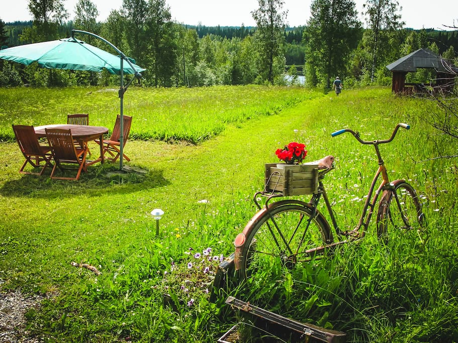 The lawn and the vintage art-bike)