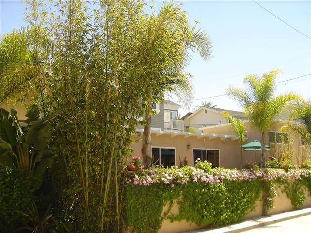 Gorgeous, Spacious Home steps from the beach and downtown shopping, dining ...