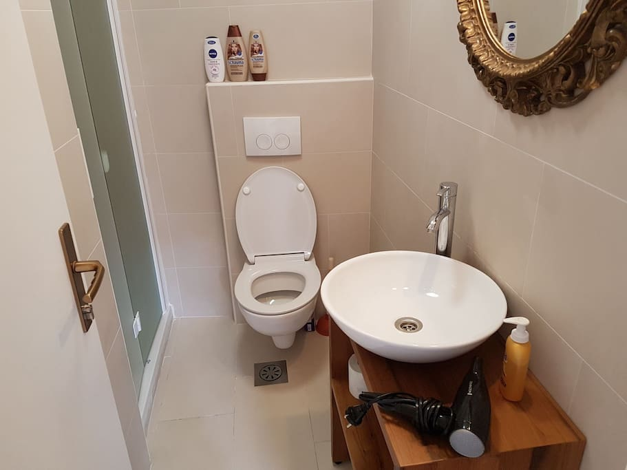 Brand new bathroom features a nice shower, toiletries and a hair drier