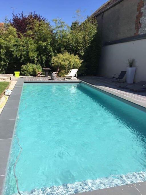 Pool 11*4 meters
