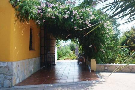 4 Bedrooms Home in El Verger - El Verger - Huis