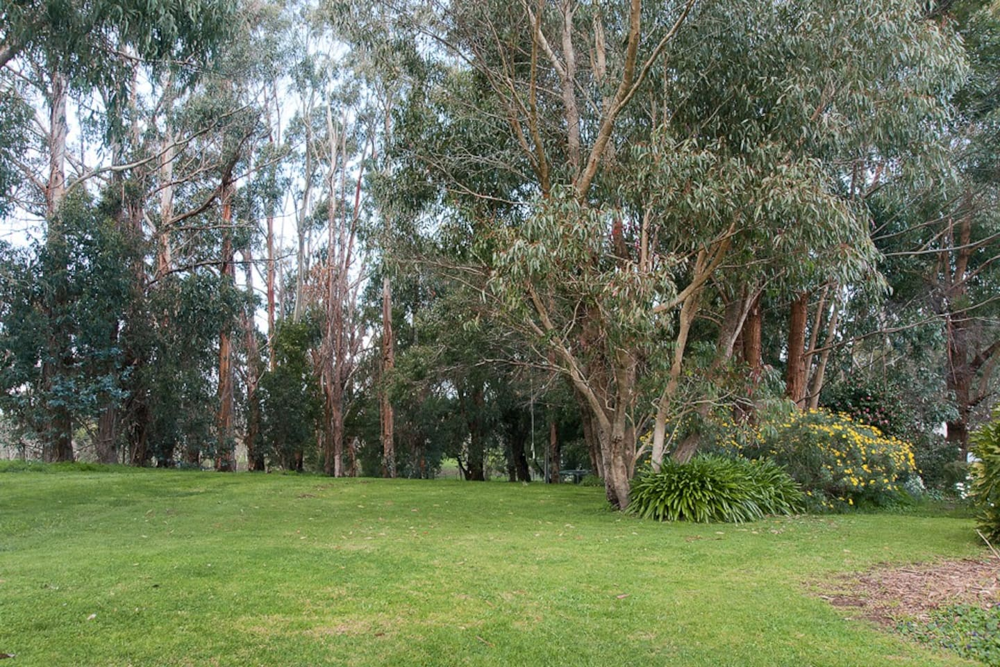 Large expansive lawn areas