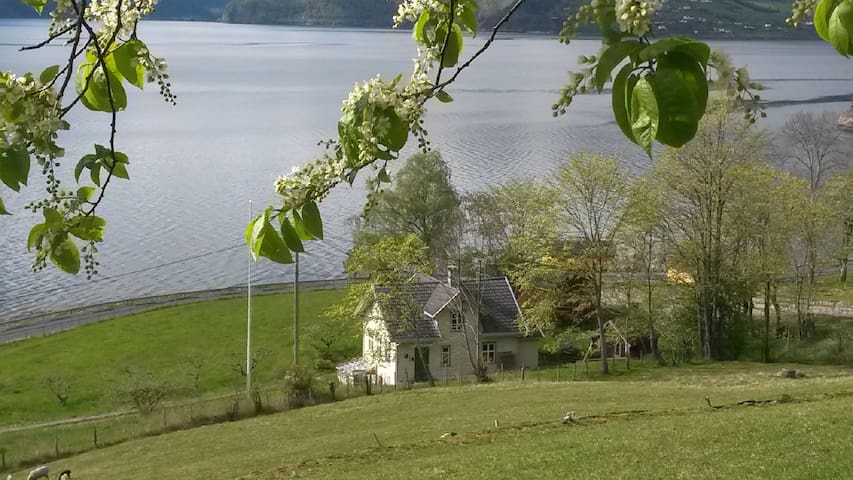 Peace and beauty by the fjord - Kroken - House