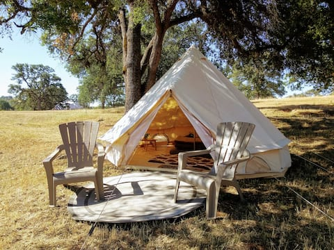 """Tent # 5 - """"Blue Oak"""" by Heartland Collective"""