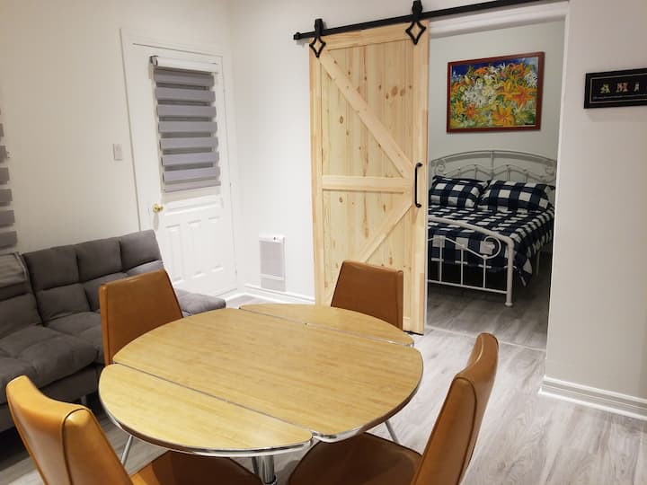 A Cute & Cosy Apartment near Old Port Montreal