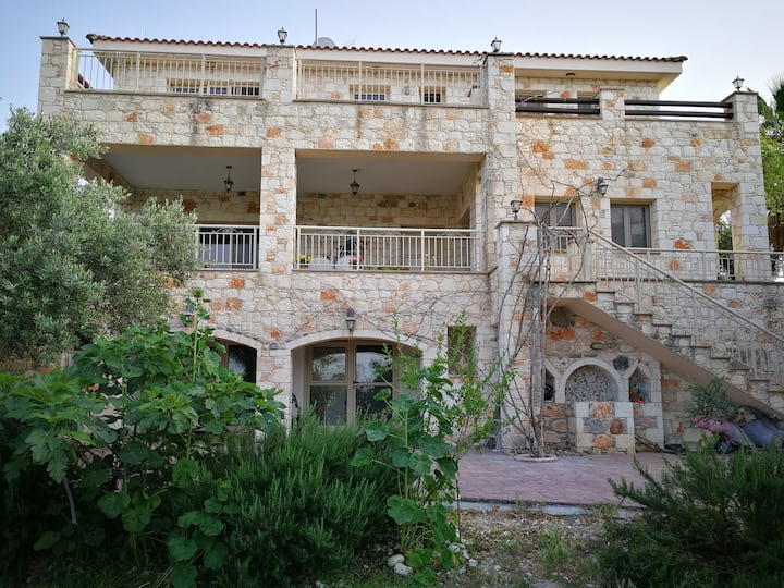 Charis stone house in Choli village-Paphos 8730