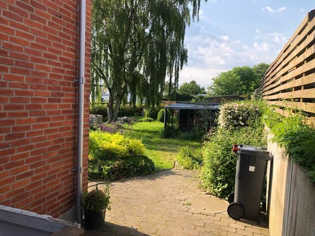 Billede af haven