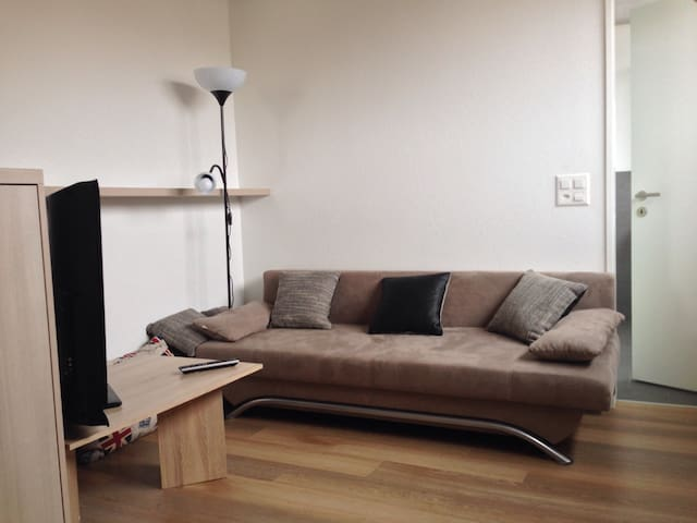 studio near HSG executive school - Sankt Gallen - Appartement