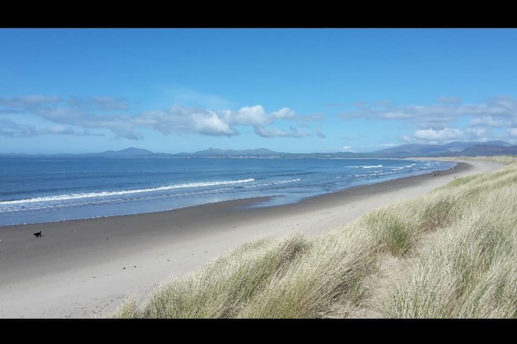 Amazing beaches & sand dunes