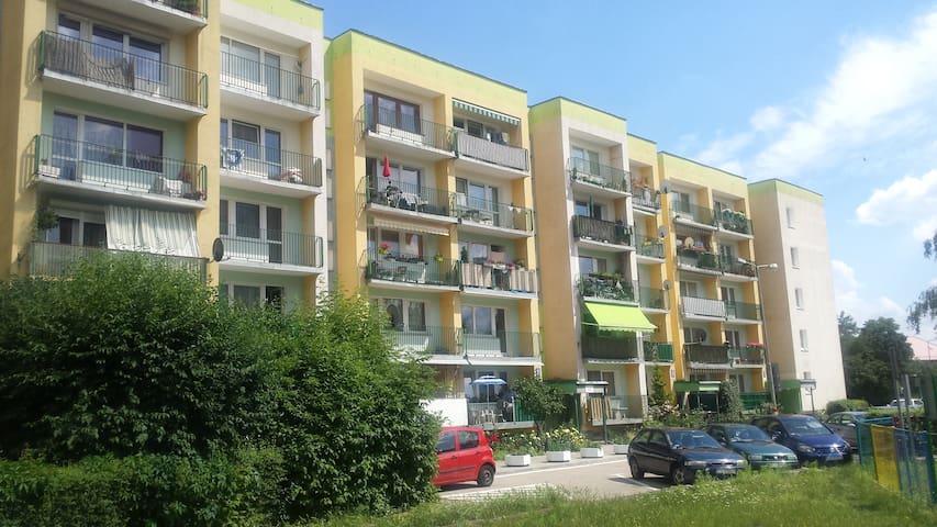 Przytulne mieszkanie wśród zieleni blisko centrum - Szczecin - Apartment