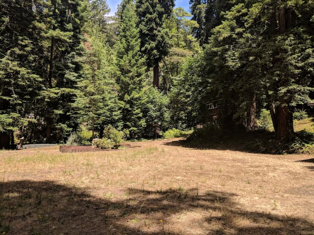 Creek house: acreage in the redwoods, no neighbors