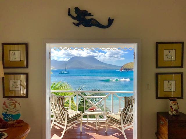 Nature Lovers Beach Front Cottage on St Kitts