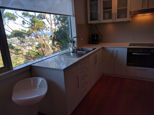 Ocean View Narrabeen Apartment