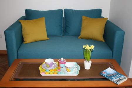Kneza Milosa Apartment - Beograd - 公寓