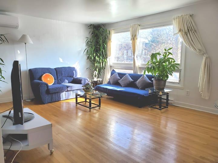 Cozy Room with Plenty Sunlight