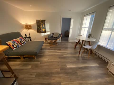 Cozy In-Town One Bedroom Adirondack Apartment