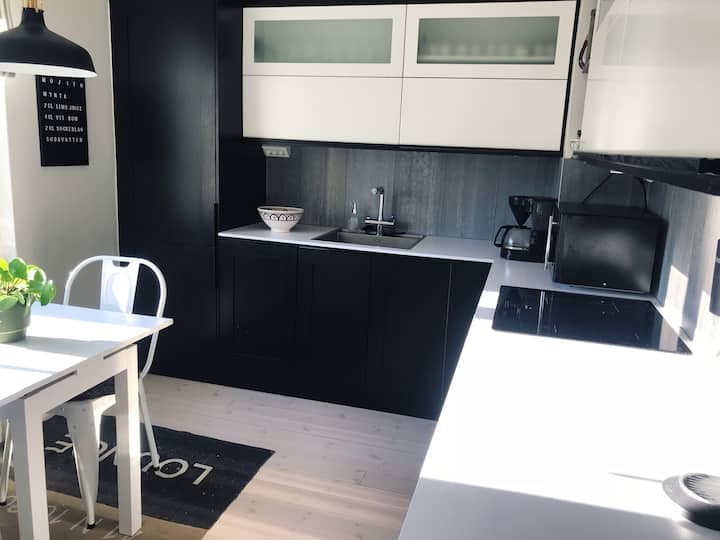 Cozy apartment only 10 min from Södermalm!
