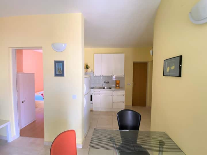 One bedroom apartment with balcony/LIMO.VINOG.