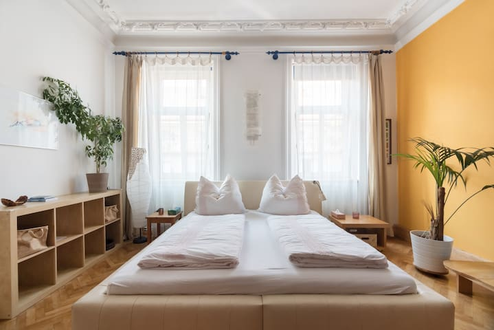 Splendid & Spacious Room in Central Vienna