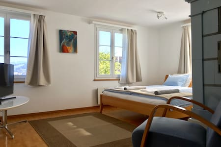 The spacious Double-Bedroom Alexandra Uni/Olma - Sankt Gallen