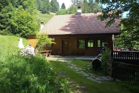 Berghütte im Schwarzwald oberhalb von Muggenbrunn