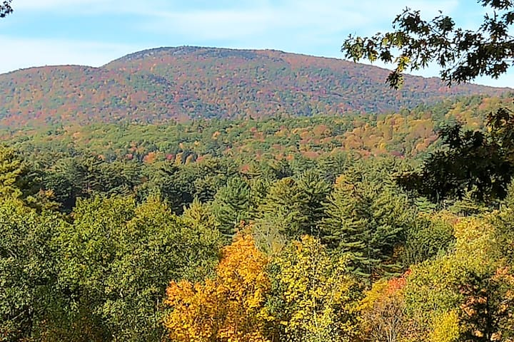 October 2019 Foliage view from the suite and property