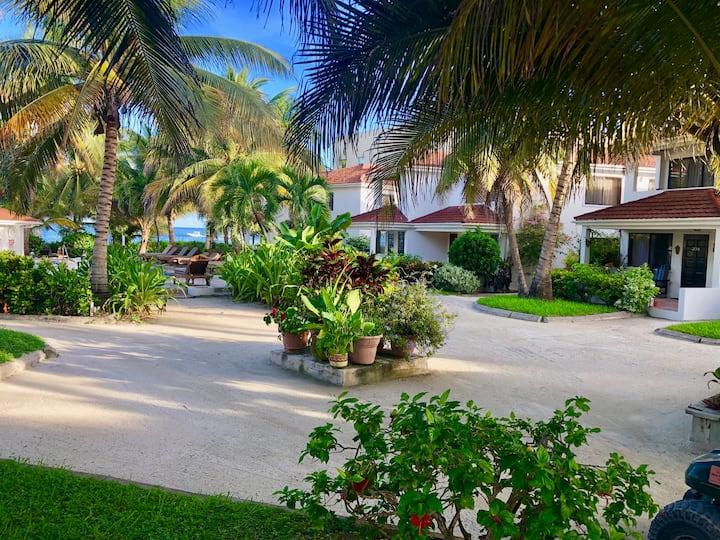 Palmarosa A -Tropical Getaway: Beach, Pool, Dock!