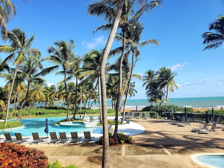 Luxury Oceanside Villa | Minutes from Rainforest