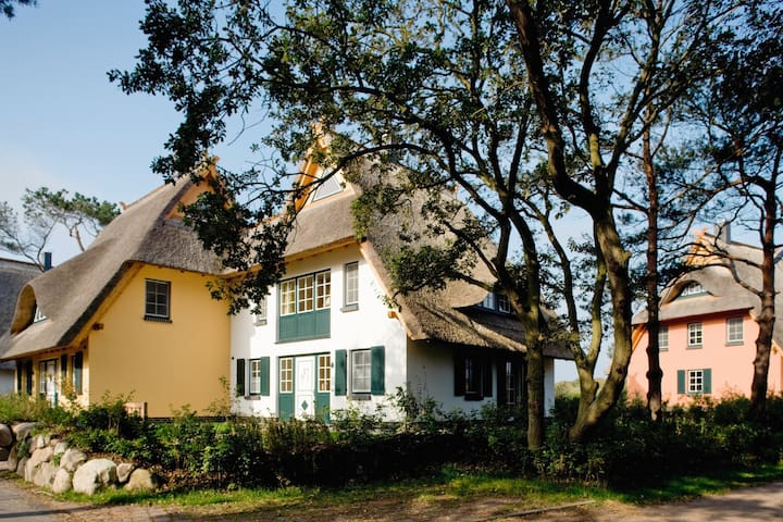 Ferienhaus für 6 Gäste mit 100m² in Dierhagen (123514)