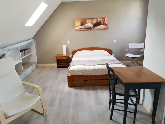 Appartement en duplex proche gare et centre ville - Laval - Apartment