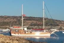 Boat to Comino , Blue lagoon  x escursions  near house.