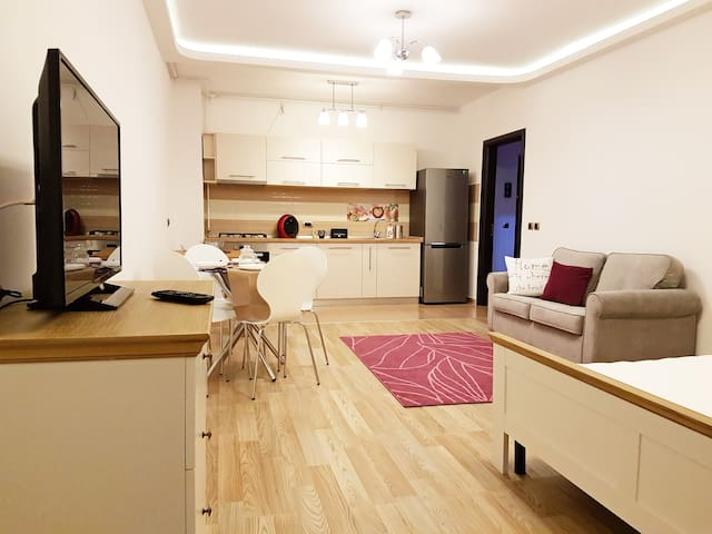 Brand NEW Luxury Spacious Studio 48 sqm + Terrace - Brașov - Apartemen
