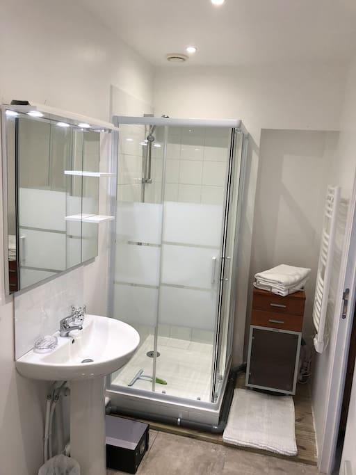 salle de bains (douche, vasque, wc, rangement)