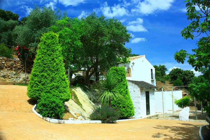 Rural and rustic farm with privat pool near Casabermeja and Montes de Málaga