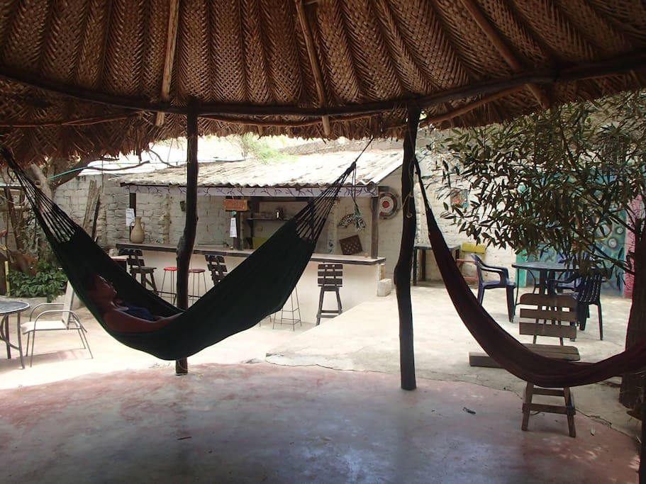 Backyard with hammocks