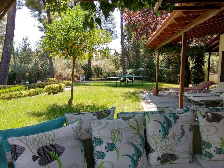 Unique Holiday Villa in Sani - feels like home!
