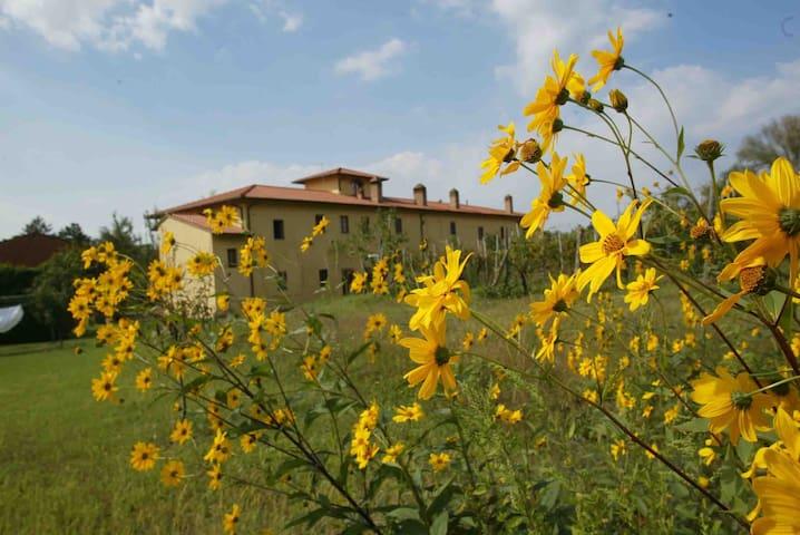 Agriturismo Il Vincio - vinci - Byt