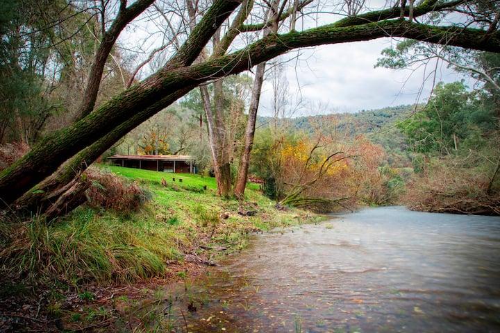 The Cabin at Kevington