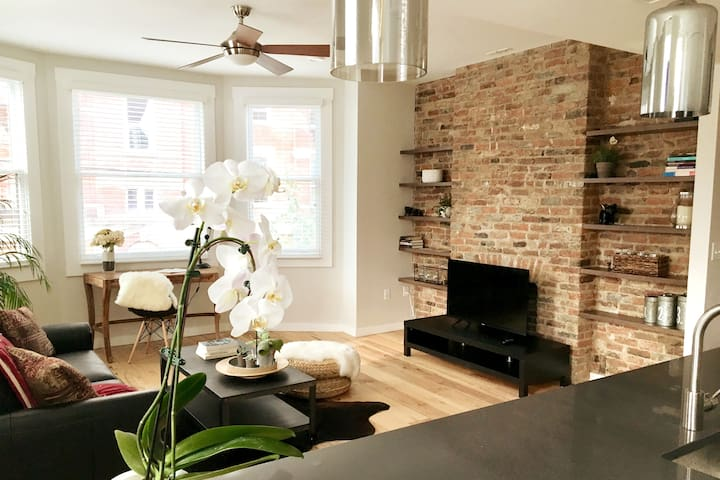 Newly Renovated Apt in Central OTR!