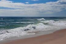 Pristine beaches.