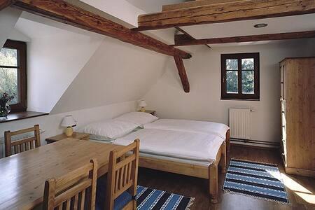 Ubytování v Chatě  Apolena - Loučná pod Klínovcem