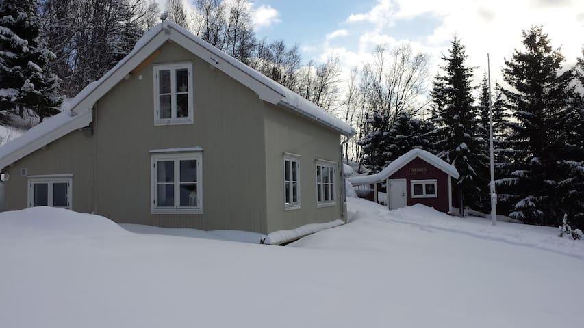 Landssted ved Lyngenfjord -- Cabin at Lyngenfjord
